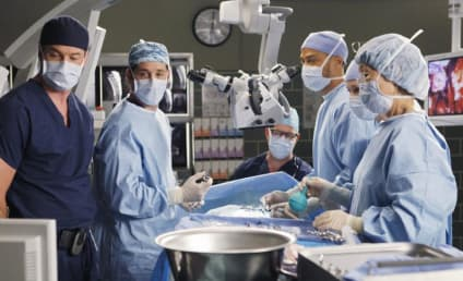 """Grey's Anatomy Episode Guide: """"Give Peace a Chance"""""""