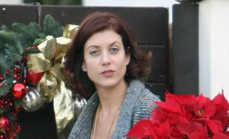 Kate Walsh: Poinsettia Pretty
