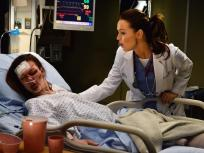 Grey's Anatomy Season 11 Episode 6