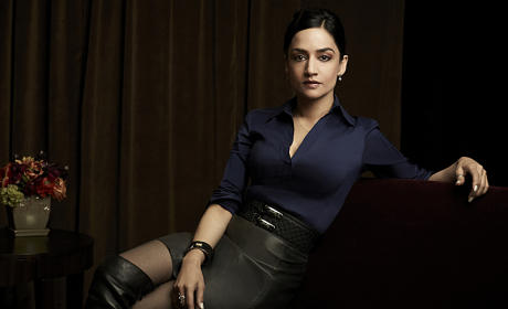 Archie Panjabi (Kalinda Sharma)  - The Good Wife