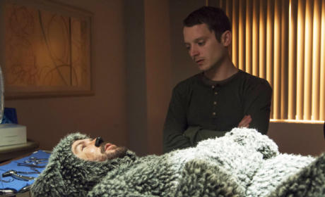 Wilfred Review: Immortality and Mortality