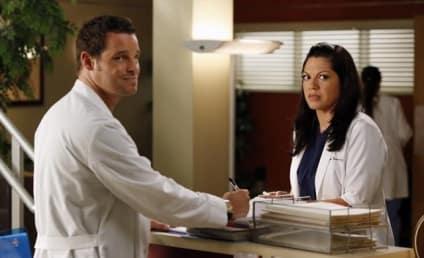 Grey's Anatomy Season 9 Finale Spoilers: Will Anyone Die?