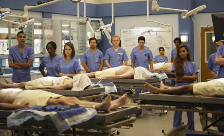 New Recruits? - Grey's Anatomy Season 12 Episode 1