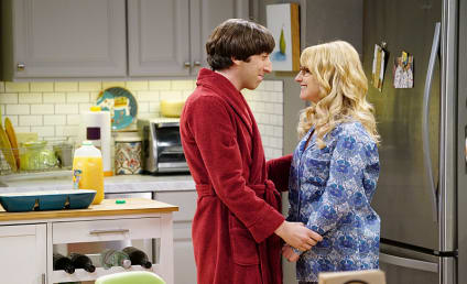 The Big Bang Theory Season 9 Episode 16 Review: The Positive Negative Reaction