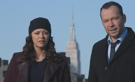 Blue Bloods Season 5 Episode 14 Review: The Poor Door