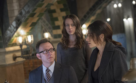 Person of Interest Season 4 Episode 10 Review: The Cold War