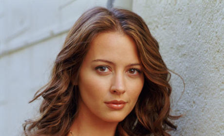 Amy Acker: Booked on Human Target Finale