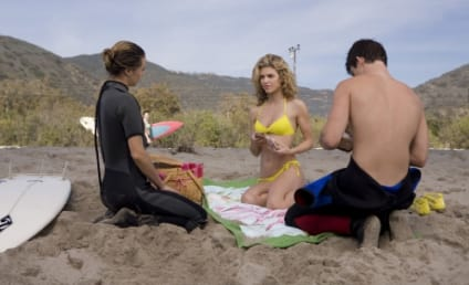 "What Did You Think of the 90210 Episode ""Girl Fight?"""