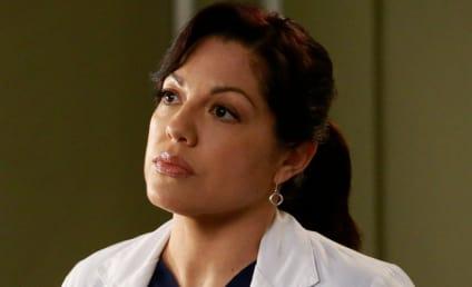 Sara Ramirez: Is She Leaving Grey's Anatomy?
