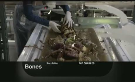 "Bones Promo: ""The Bikini in the Soup"""