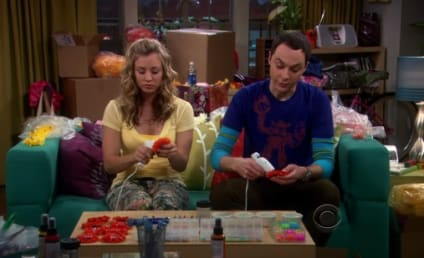 The Big Bang Theory Spoilers: Sheldon in a Relationship?