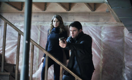 Nikita Season 3 Preview: Dillon Casey on Love, the New Division and More