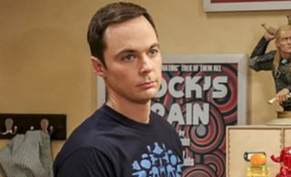 Watch The Big Bang Theory Online: Season 10 Episode 4