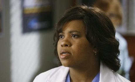 Grey's Anatomy Spoilers: New Blood, New Beginnings