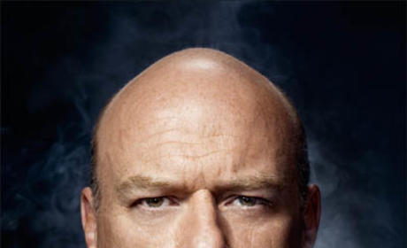 Castle Casting Scoop: Dean Norris to Negotiate an Episode