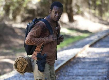 Watch The Walking Dead Season 4 Episode 13 Online