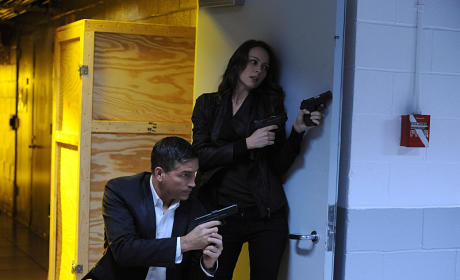 Suicide Mission - Person of Interest