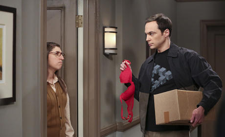 Post Break Up - The Big Bang Theory