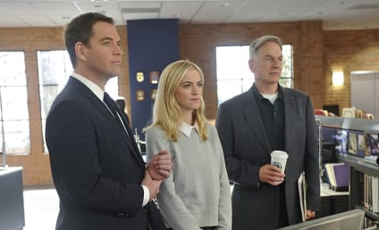 NCIS Season 12 Episode 19 Review: Patience