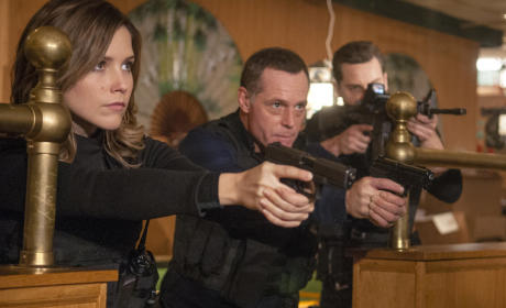 Chicago PD: Watch Season 1 Episode 8 Online