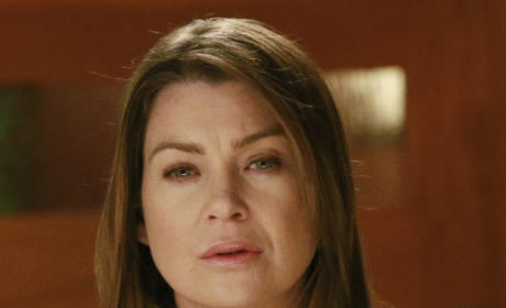 Meredith Grey - Grey's Anatomy Season 11 Episode 22