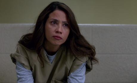 Aleida - Orange is the New Black Season 3 Episode 12