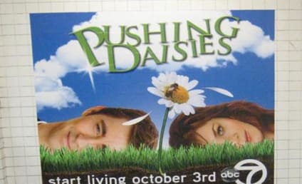 A Pushing Daisies Promo
