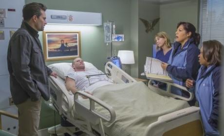 Watch Grey's Anatomy Online: Season 12 Episode 13
