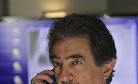 Criminal Minds Exclusive: Joe Mantegna on Vietnam Flashbacks, Playing with Bears and More!