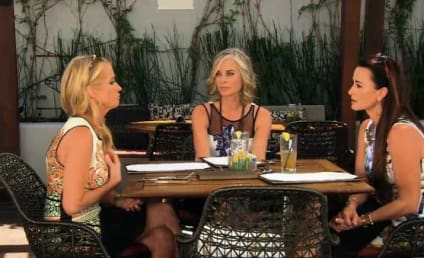 The Real Housewives of Beverly Hills Season 5 Episode 13 Review: Sister Act