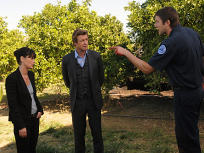 The Mentalist Season 3 Episode 9