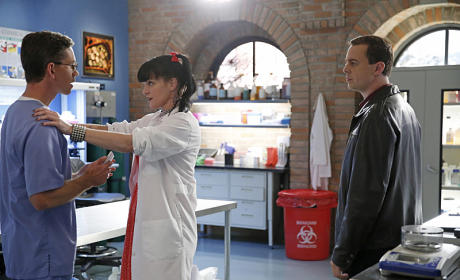 NCIS Photo Gallery: Ready for a Baby Shower?
