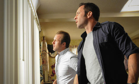 On the Lookout  - Hawaii Five-0 Season 5 Episode 17