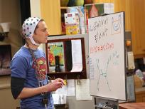 The Big Bang Theory Season 8 Episode 13