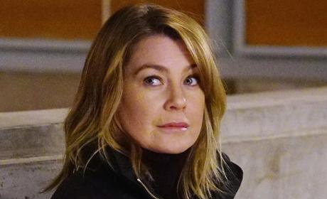 Watch Grey's Anatomy Online: Season 12 Episode 14