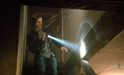 Supernatural Season 10 Episode 19 Review: The Werther Project