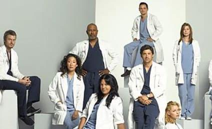 Grey's Anatomy: The Season Four Cast