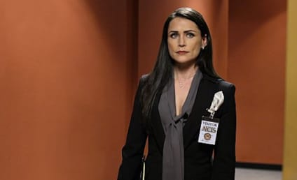 Rena Sofer Cast as Queen Eva on Once Upon a Time