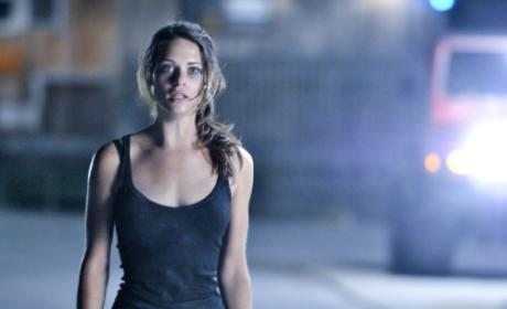 Nikita: Casting for a Love Interest