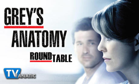 Grey's Anatomy Round Table: All About Amelia