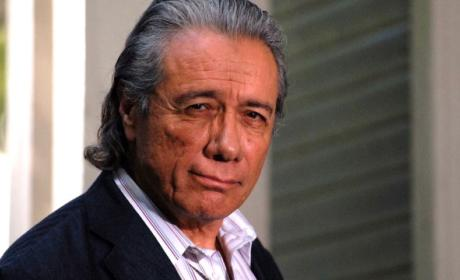Edward James Olmos to Guest Stars on Agents of SHIELD