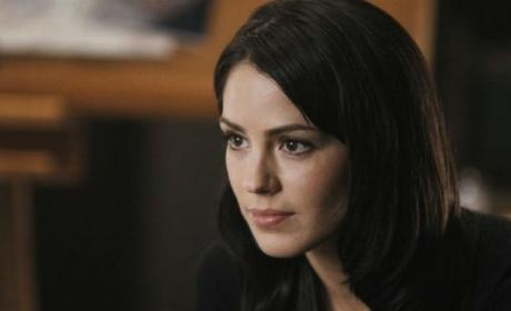 Michelle Borth to Exit Hawaii Five-0