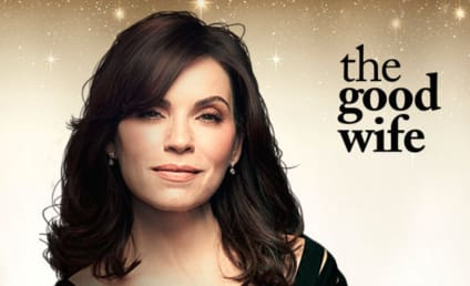 Watch The Good Wife Online: Season 7 Episode 14