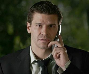 Special Agent Seeley Booth