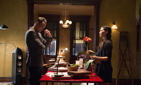 Elementary Season 3 Episode 10 Review: Seed Money
