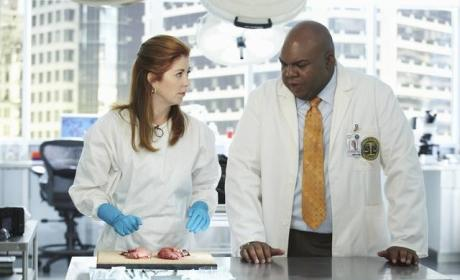 In the Body of Proof Lab