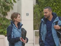 Grey's Anatomy Season 12 Episode 13
