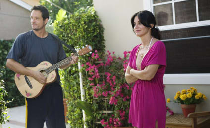 Production Halted on Cougar Town