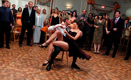 How I Met Your Mother Season Premiere Review: A Wedding Wonderland