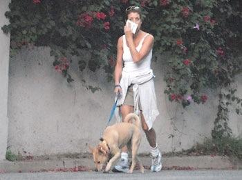 Kate Walsh Walks Lucy the Dog